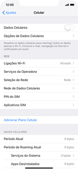 Como ativar e desativar uma rede de dados - Apple iPhone XR - Passo 4