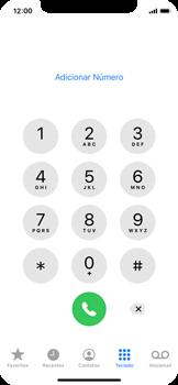 O celular não faz chamadas - Apple iPhone 11 Pro - Passo 7