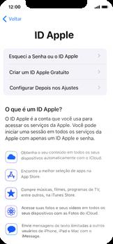 Como configurar pela primeira vez - Apple iPhone 11 Pro - Passo 15