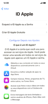 Como configurar pela primeira vez - Apple iPhone X - Passo 17