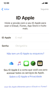 Como configurar pela primeira vez - Apple iPhone X - Passo 16