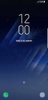 Como configurar a internet do seu aparelho (APN) - Samsung Galaxy S8 - Passo 32