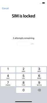 Como ativar seu aparelho - Apple iPhone X - Passo 4