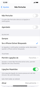 O celular não recebe chamadas - Apple iPhone 11 Pro - Passo 6