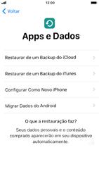 Como configurar pela primeira vez - Apple iPhone 7 - Passo 15