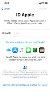 Como ativar seu aparelho - Apple iPhone XR - Passo 15