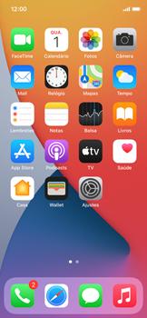 Como bloquear chamadas de um número específico - Apple iPhone 11 Pro - Passo 2