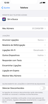 O celular não faz chamadas - Apple iPhone 11 Pro - Passo 11