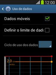 Como ativar e desativar uma rede de dados - Samsung Galaxy Pocket - Passo 4