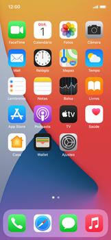 Explicação dos ícones - Apple iPhone 11 Pro - Passo 25