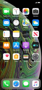Personalizar la pantalla - Apple iPhone XS - Passo 2