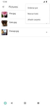 Transferir datos desde la tarjeta SD a tu dispositivo - Motorola Moto G8 Plus (Dual SIM) - Passo 6