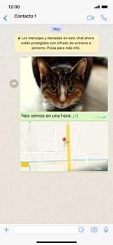 Usar WhatsApp - Apple iPhone XS Max - Passo 16