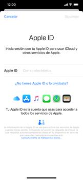 Realiza una copia de seguridad con tu cuenta - Apple iPhone 11 - Passo 4
