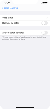 Activa o desactiva el roaming de datos - Apple iPhone 11 - Passo 6