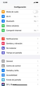 Verificar el uso de datos por apps - Apple iPhone XS - Passo 2