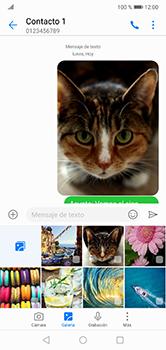 Envía fotos, videos y audio por mensaje de texto - Huawei P20 Lite - Passo 17