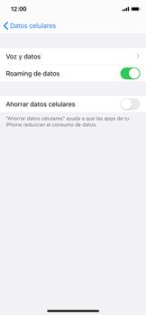 Activa o desactiva el roaming de datos - Apple iPhone 11 Pro - Passo 5