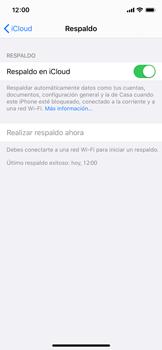 Realiza una copia de seguridad con tu cuenta - Apple iPhone XS - Passo 14
