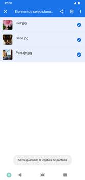 Transferir datos desde la tarjeta SD a tu dispositivo - Motorola Moto G8 Plus (Dual SIM) - Passo 7