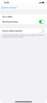 Activa o desactiva el roaming de datos - Apple iPhone 11 - Passo 5