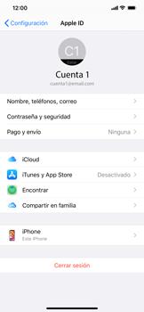 Realiza una copia de seguridad con tu cuenta - Apple iPhone 11 - Passo 8