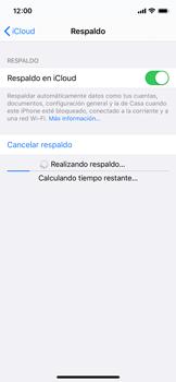 Realiza una copia de seguridad con tu cuenta - Apple iPhone 11 Pro - Passo 13