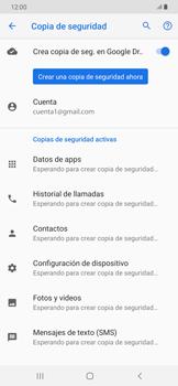 Realiza una copia de seguridad con tu cuenta - Samsung Galaxy A30 - Passo 11