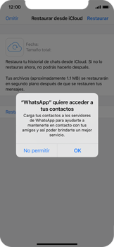 Configuración de Whatsapp - Apple iPhone 11 Pro - Passo 12