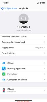 Realiza una copia de seguridad con tu cuenta - Apple iPhone XS - Passo 8