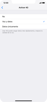 Configurar el equipo para navegar en modo de red LTE - Apple iPhone XS Max - Passo 6