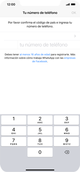 Configuración de Whatsapp - Apple iPhone 11 - Passo 6