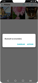 Transferir fotos vía Bluetooth - LG G7 Fit - Passo 10