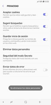 Limpieza de explorador - Samsung Galaxy Note 8 - Passo 12