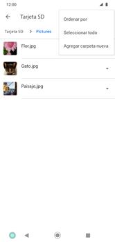 Transferir datos desde la tarjeta SD a tu dispositivo - Motorola Moto G8 Play (Single SIM) - Passo 6