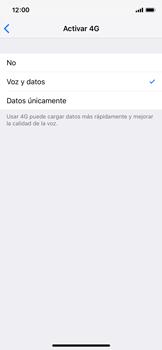 Configurar el equipo para navegar en modo de red LTE - Apple iPhone XS - Passo 6
