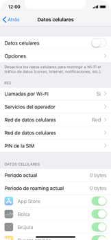Desactiva tu conexión de datos - Apple iPhone XS - Passo 4