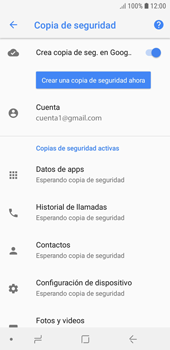 Realiza una copia de seguridad con tu cuenta - Samsung J6 - Passo 12