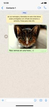 Usar WhatsApp - Apple iPhone XS Max - Passo 12