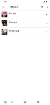 Transferir datos desde tu dispositivo a la tarjeta SD - Motorola Moto G8 Plus (Dual SIM) - Passo 5