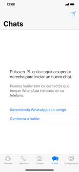 Configuración de Whatsapp - Apple iPhone XS Max - Passo 14