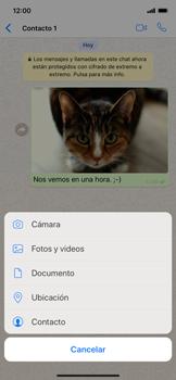 Usar WhatsApp - Apple iPhone XS Max - Passo 13
