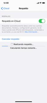 Realiza una copia de seguridad con tu cuenta - Apple iPhone XS - Passo 13