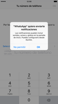 Configuración de Whatsapp - Apple iPhone 6 Plus - Passo 5