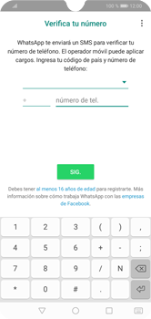 Configuración de Whatsapp - Huawei Y7 2019 - Passo 5