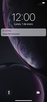Configura el Internet - Apple iPhone XR - Passo 13