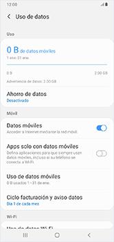 Desactiva tu conexión de datos - Samsung Galaxy A10 - Passo 5