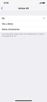 Configurar el equipo para navegar en modo de red LTE - Apple iPhone XS - Passo 5