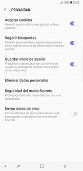 Limpieza de explorador - Samsung Galaxy Note 8 - Passo 9