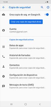 Realiza una copia de seguridad con tu cuenta - Samsung Galaxy A10 - Passo 11